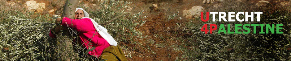 Woman clenching to her olive tree